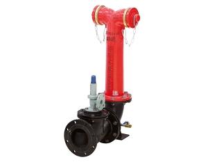 地上水泵接合器