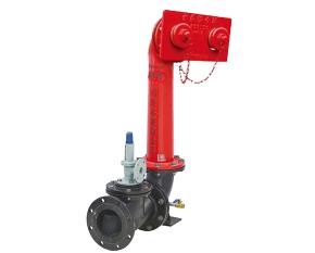 墙壁式式水泵接合器