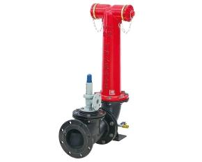 地上式水泵接合器