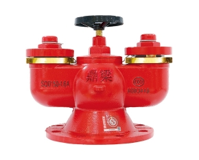 多功能水泵接合器